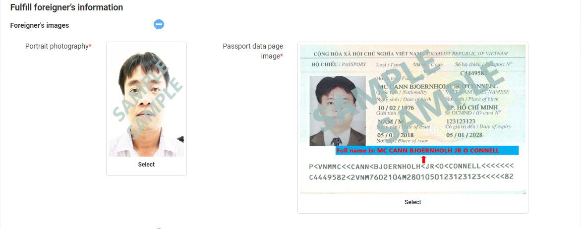 Apply Vietnam e-visa sample